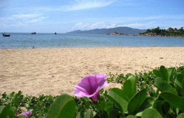 Biến tấu biển – Bùi Xuân