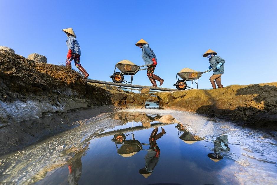 Tác phẩm Nguyễn Đăng Đệ