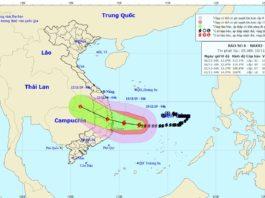 Cập nhật tin tức về cơn bão số 6