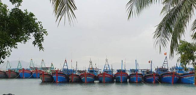 Khánh Hòa: Thuyền đã vào bến neo đậu