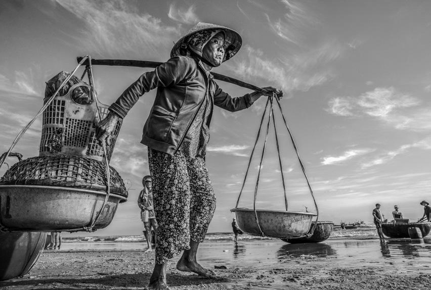 Ai về nhắn với bạn nguồn Mít non gửi xuống, cá chuồn gửi lên Xã Bình Minh, huyện Thăng Bình, Quảng Nam