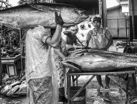 Chỉ điều xe tám đậu tư Đố ai câu đặng con cá ngừ biển Đông Thị trấn Tam Quan, huyện Hoài Nhơn, Bình Định