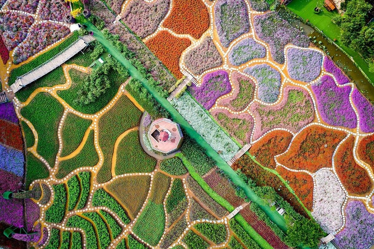"""Bức ảnh Thung lũng hoa chụp tại hồ Tây, Hà Nội của tác giả Nguyễn Tùng Việt. Với tổng diện tích lên tới 7.000 m2, thung lũng hoa hồ Tây giống như vườn địa đàng giữa lòng thành phố. Trước đây, khu vực này phần lớn là đầm sen hoang vắng nhưng với công cuộc cải tạo và hàng nghìn bông hoa, vùng đất trở nên rực rỡ. """"Khi tới đây, bạn sẽ bước vào không gian thanh bình, yên tĩnh, cách xa Hà Nội nhộn nhịp và ồn ào. Trong vườn hoa rộng lớn này, hàng nghìn bông hoa đang khoe sắc"""", anh mô tả."""