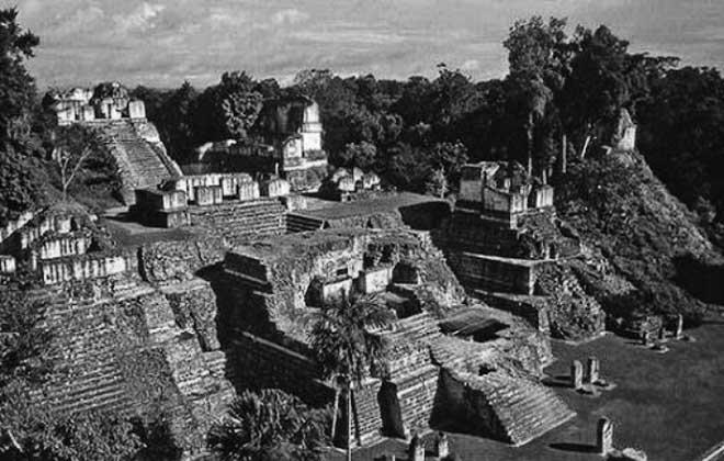 người Maya còn buôn bán các loại nông sản ở khắp khu vực Maya, trên khắp Mesocerica và xa hơn nữa.