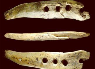 Công cụ 40.000 năm tuổi bằng ngà voi ma mút - Lịch Sử - vansudia.net