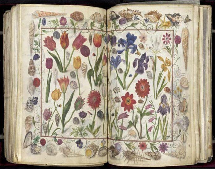 Một trang trong cuốn sáchDas Grosse Stammbuch. Ảnh:Thư viện Herzog August.