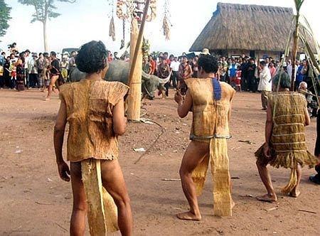 Biểu tượng cây mía trong lễ hội đâm trâu