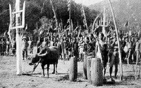 Lễ hội đâm trâu 1938 (Ảnh : Le Pichon trong Les chaseurs de sang của Le Pichon)