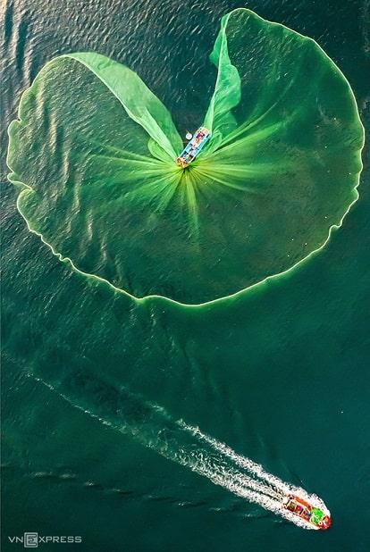 """Bức ảnh """"Hoa lưới"""" chụp cảnh ngư dân đánh bắt cá cơm tại vùng biển Hòn Yến, Phú Yên. Hòn Yến thuộc thôn Nhơn Hội, xã An Hòa, huyện Tuy An, cách thành phố Tuy Hòa khoảng 20 km về hướng đông bắc. Khách tham quan đến Hòn Yến sẽ có cơ hội trải nghiệm du lịch làng nghề đánh cá, tận mắt ngắm nhìn những đoàn tàu tấp nập, cảnh ngư dân hối hả làm việc lúc sáng sớm và chiều."""