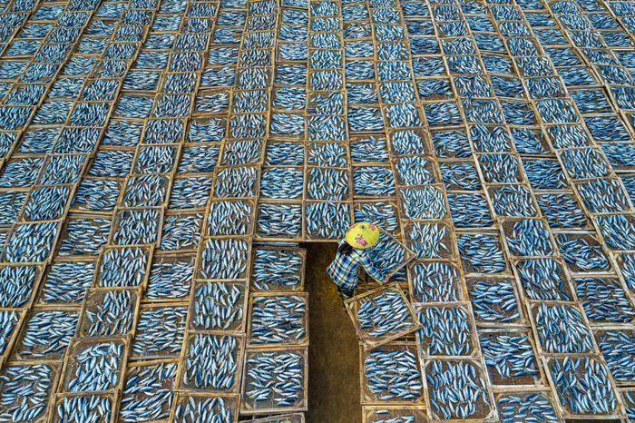 """""""Phơi cá"""" - tác phẩm của nhiếp ảnh gia Khánh Phan - thắng hạng mục Du lịch. Bức ảnh gây ấn tượng bởi cảm giác đơn độc khi nhìn người phụ nữ giữa hàng trăm khay cá khô. Tác giả cho biết ảnh chụp tại chợ cá Long Hải, Bà Rịa - Vũng Tàu. """"Nhìn trên cao, nó giống như một tấm vải lớn và người phụ nữ kia đang dệt chúng lại với nhau"""", tờ The Guardian bình luận."""