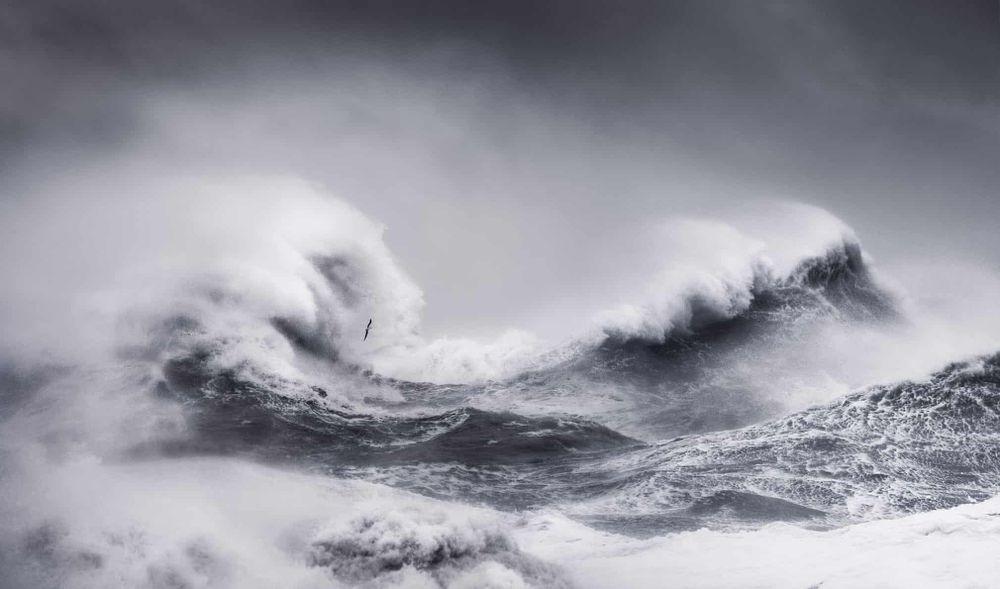 """Bức ảnh """"Ngày bão"""" được vào danh sách rút gọn hạng mục Chuyển động."""